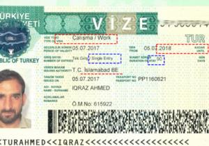Как получить российскую визу гражданину турции