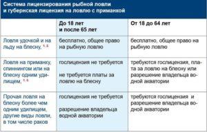 Лицензия на вылов рыбы сетями на госуслугах