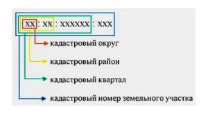 Как определить дату присвоения кадастрового номера