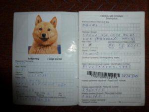 Как заполнить паспорт собаки образец