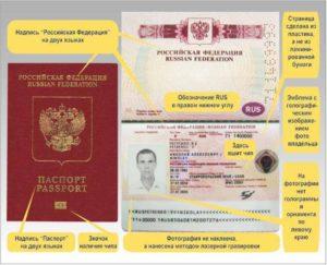 Как найти паспорт в электронном виде