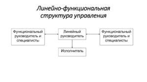 В чем разница функциональный и линейный руководитель