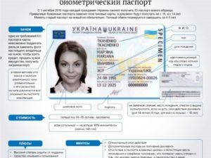 Где указан номер паспорта в биометрическом паспорте
