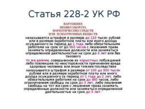 Какие поправки может внести госдума в ст 228