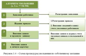 Дисквалификация руководителя пошаговая инструкция по уволнению