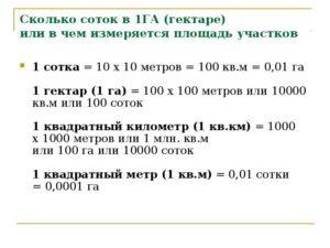 1 гектар сколько м2