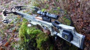 Арбалет для охоты нужно ли разрешение на