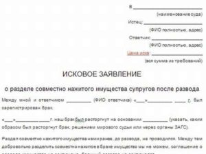 Исковое заявление о разделе земельного участка между супругами