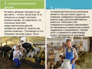 Должностные инструкции доярки на ферме крс скачать