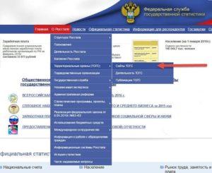 Проверить отчеты в статистику по окпо на сайте росстата